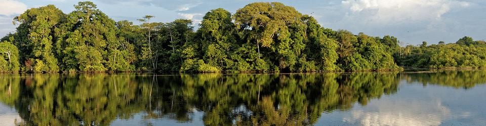 Heliconia Amazonia Turismo