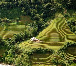 Quoi voir et que faire dans les montagnes du Nord du Vietnam ?