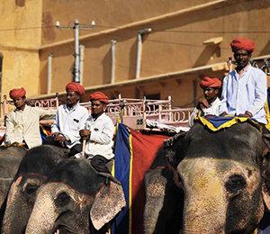 Quand partir au Rajasthan selon Voyage in India ?