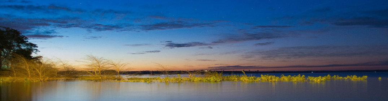 Top 7 des raisons de visiter Manaus au moins une fois dans sa vie
