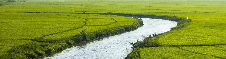 Mu Cang Chai, une région à visiter absolument au Vietnam