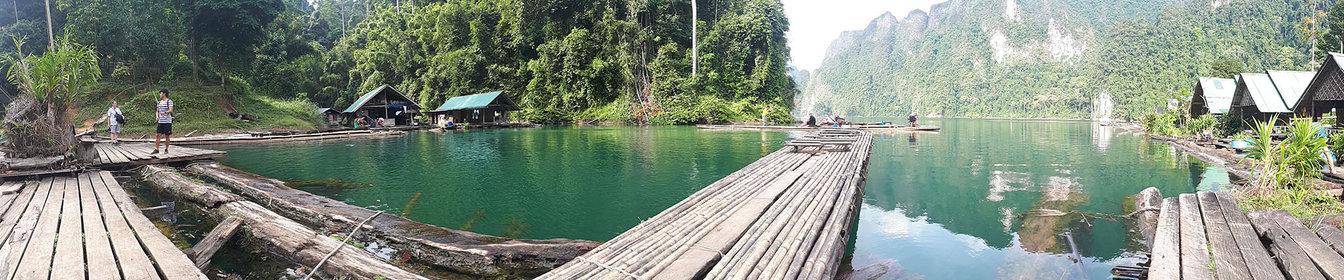 La jungle luxuriante de la Thaïlande