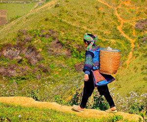 Vietnam : immersion au pays du dragon par