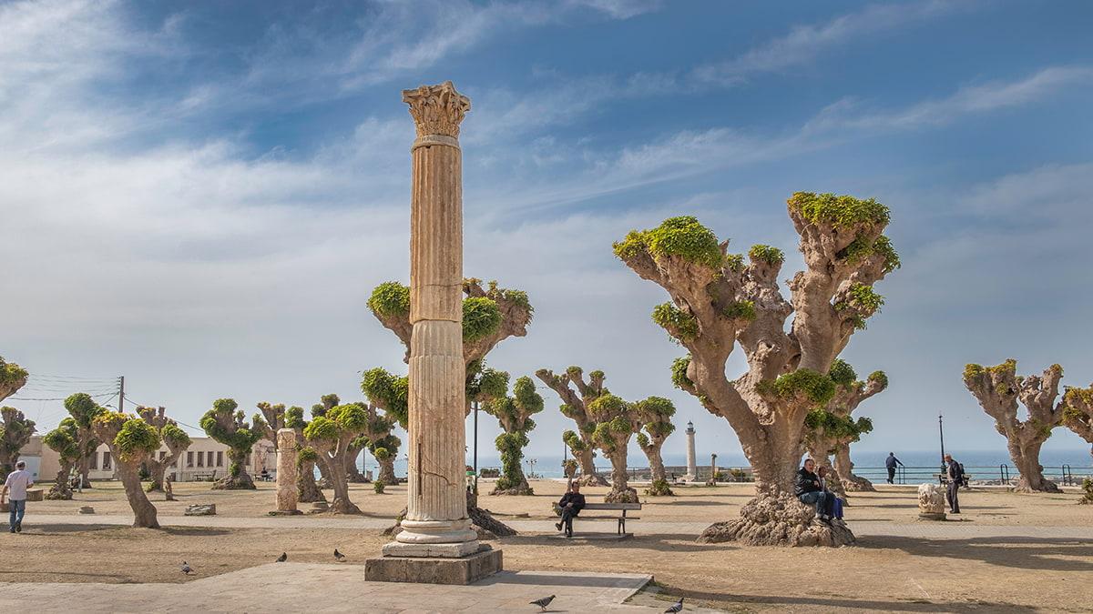 Circuit Culturel à Alger