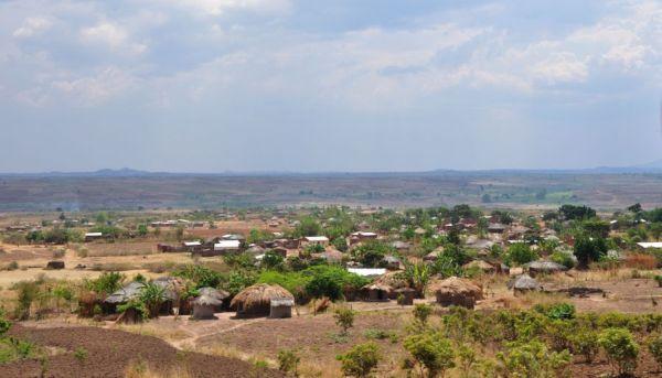 Zambie 3