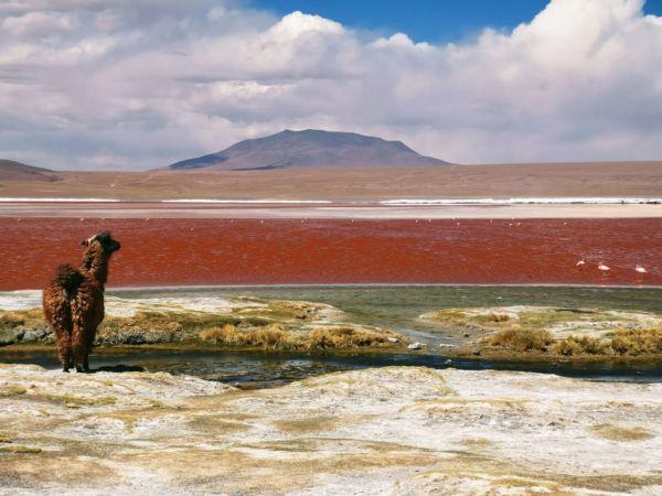 voyage Bolivie 1