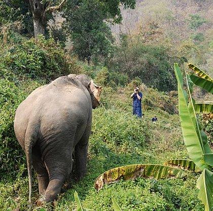 voyage Thaïlande 6