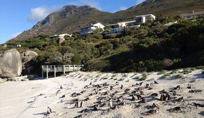 voyage Afrique du Sud 2