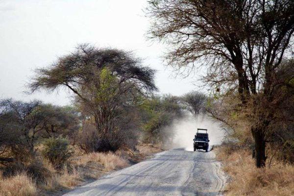Séjour Safaris dans le Nord de la Tanzanie