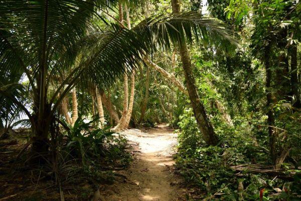 Voyage au Costa Rica : Douceur de vivre