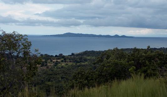 Réserve naturelle de Maputo, au Mozambique