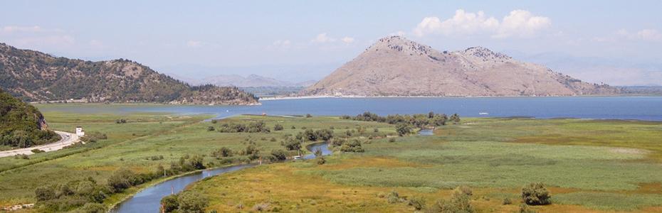 Le las Skadar à cheval entre l'Albanie et le Montenegro est le plus grands des pays balkans