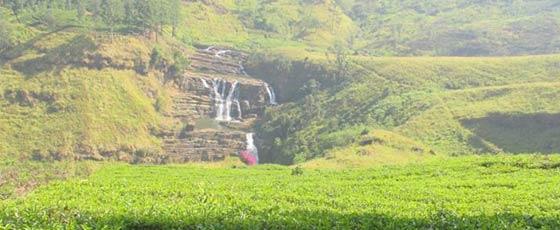 souvenirs-de-vacances-au-sri-lanka-agence-de-voyage-locale-sri-lanka-roads-3