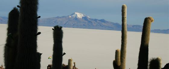 Entre reliefs et cactus, les paysages eu salar d'Uyni sont parfois surprenants.