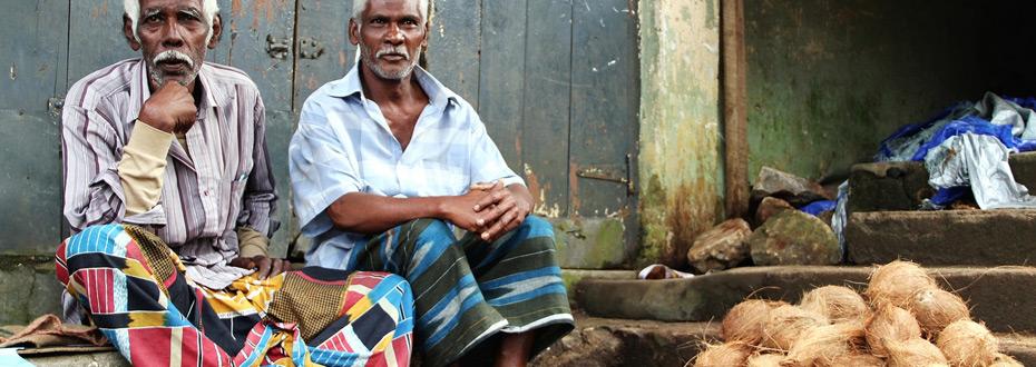 Vendeurs sri lankais de noix de coco !