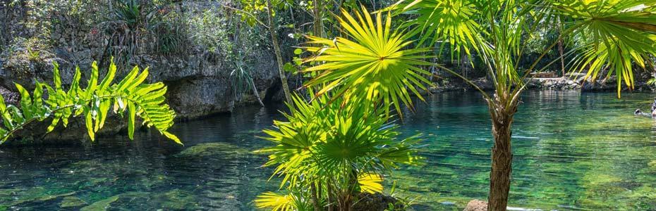 Détente dans le Yucatan