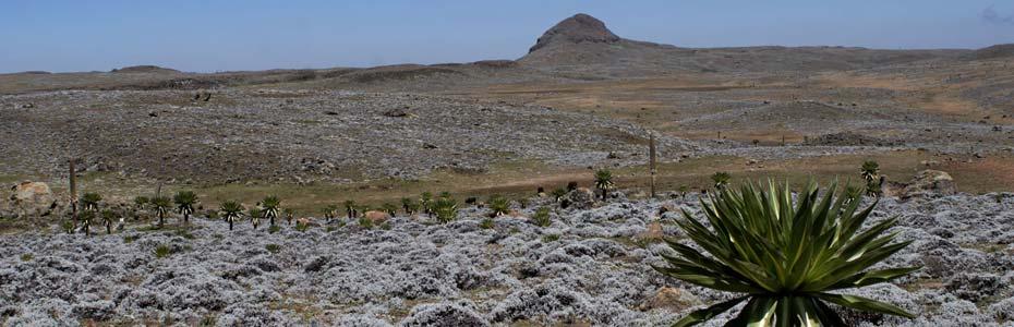 Panorama en Éthiopie.