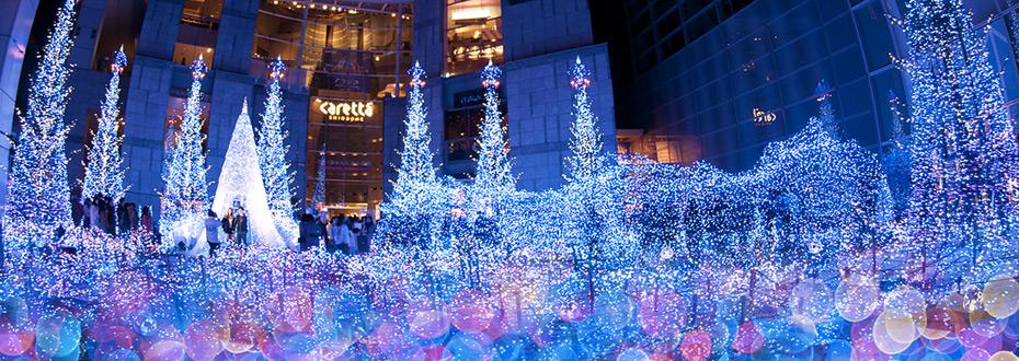 Visite des plus belles illuminations de no l tokyo tripconnexion for Illumination exterieure pour noel